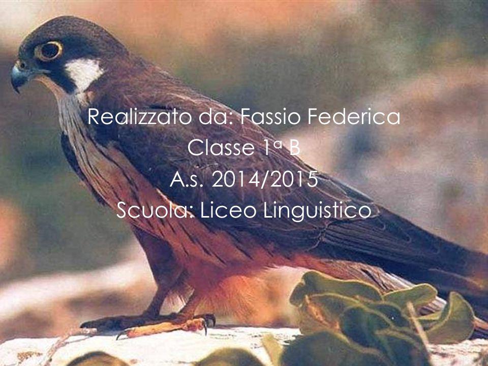 Realizzato da: Fassio Federica Classe 1 a B A.s. 2014/2015 Scuola: Liceo Linguistico