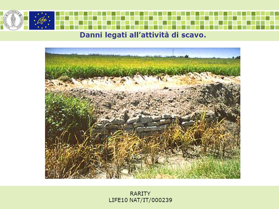 Danni legati all'attività di scavo. RARITY LIFE10 NAT/IT/000239