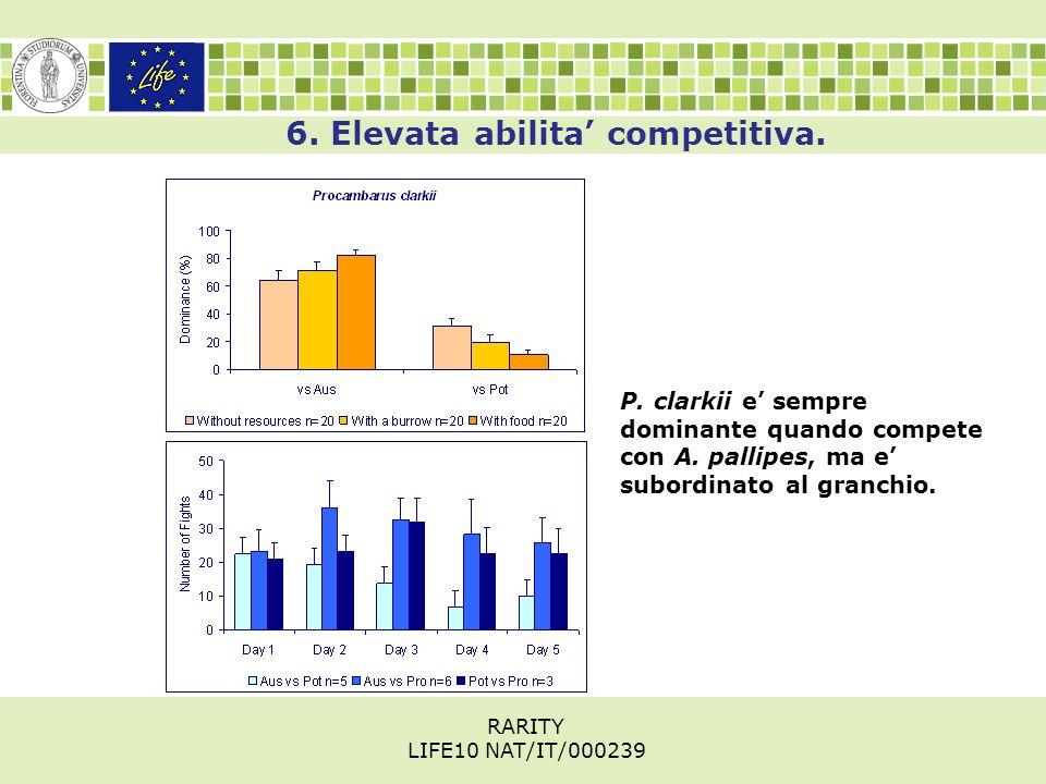 6. Elevata abilita' competitiva. P. clarkii e' sempre dominante quando compete con A.