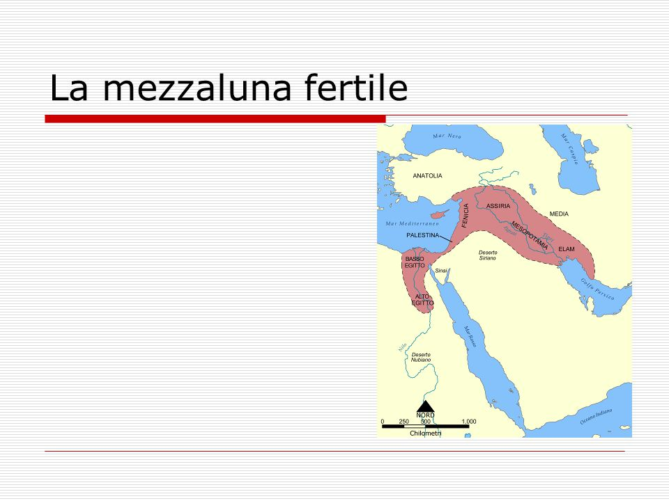 Civiltà mesopotamica 1000 a.C. Assiri 2000 a. C. Babilonesi 3000 a.