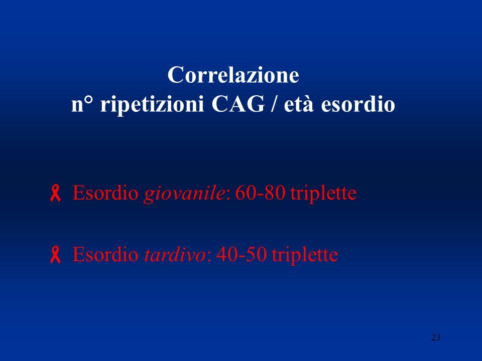 23 Correlazione n° ripetizioni CAG / età esordio  Esordio giovanile: 60-80 triplette  Esordio tardivo: 40-50 triplette