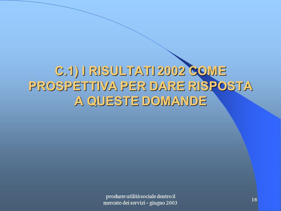 produrre utilità sociale dentro il mercato dei servizi - giugno 2003 16 C.1) I RISULTATI 2002 COME PROSPETTIVA PER DARE RISPOSTA A QUESTE DOMANDE