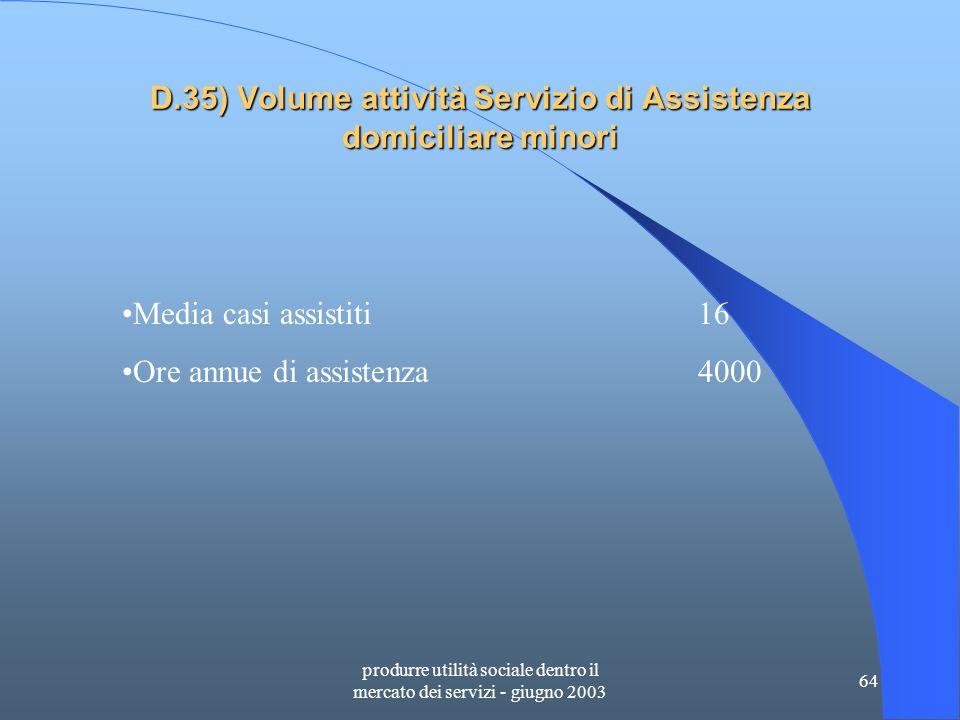 produrre utilità sociale dentro il mercato dei servizi - giugno 2003 64 D.35) Volume attività Servizio di Assistenza domiciliare minori Media casi assistiti16 Ore annue di assistenza4000