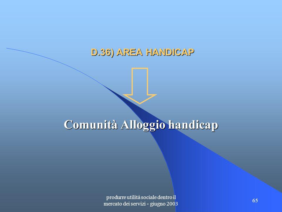 produrre utilità sociale dentro il mercato dei servizi - giugno 2003 65 D.36) AREA HANDICAP Comunità Alloggio handicap