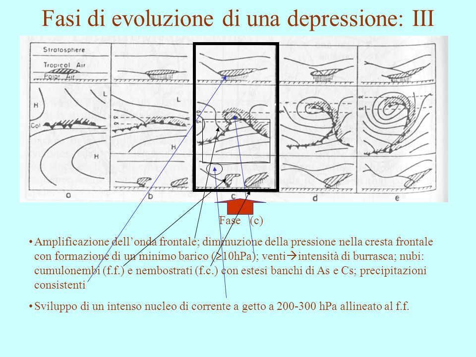 Fasi di evoluzione di una depressione: III Fase (c) Amplificazione dell'onda frontale; diminuzione della pressione nella cresta frontale con formazion