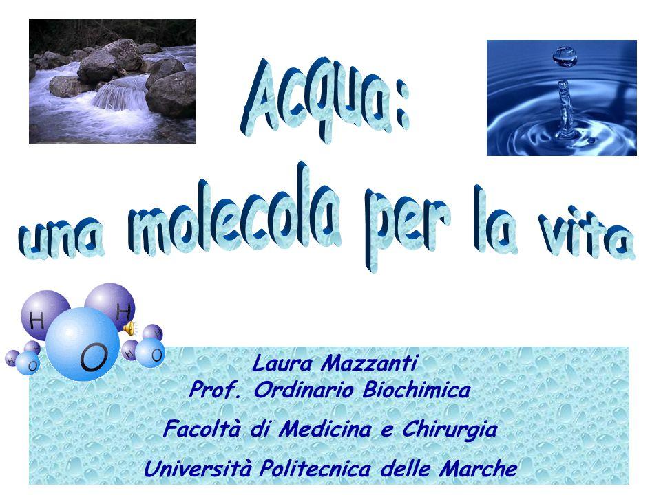 Laura Mazzanti Prof. Ordinario Biochimica Facoltà di Medicina e Chirurgia Università Politecnica delle Marche