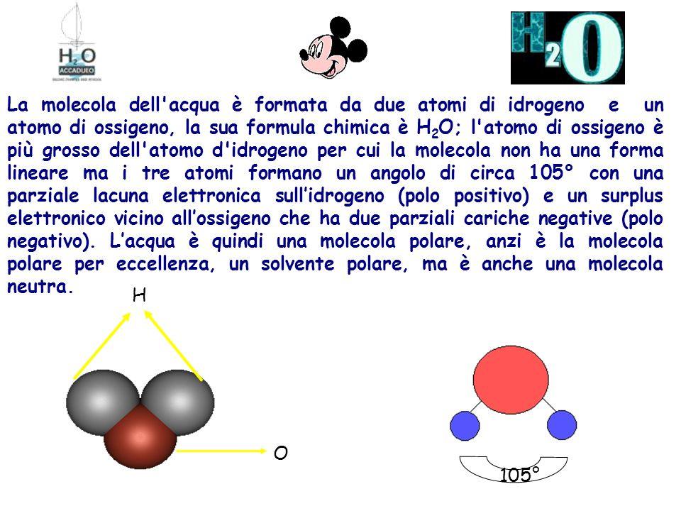 La molecola dell acqua è formata da due atomi di idrogeno e un atomo di ossigeno, la sua formula chimica è H 2 O; l atomo di ossigeno è più grosso dell atomo d idrogeno per cui la molecola non ha una forma lineare ma i tre atomi formano un angolo di circa 105° con una parziale lacuna elettronica sull'idrogeno (polo positivo) e un surplus elettronico vicino all'ossigeno che ha due parziali cariche negative (polo negativo).