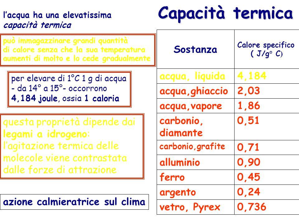 Capacità termica l'acqua ha una elevatissima capacità termica 0,736vetro, Pyrex 0,24argento 0,45ferro 0,90alluminio 0,71 carbonio,grafite 0,51carbonio, diamante 1,86acqua,vapore 2,03acqua,ghiaccio 4,184acqua, liquida Calore specifico ( J/g° C ) Sostanza per elevare di 1°C 1 g di acqua - da 14° a 15°- occorrono 4,184 joule, ossia 1 caloria questa proprietà dipende dai legami a idrogeno: l'agitazione termica delle molecole viene contrastata dalle forze di attrazione può immagazzinare grandi quantità di calore senza che la sua temperatura aumenti di molto e lo cede gradualmente azione calmieratrice sul clima