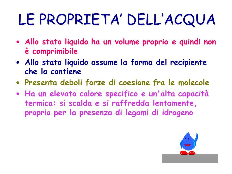 LE PROPRIETA' DELL'ACQUA Allo stato liquido ha un volume proprio e quindi non è comprimibile Allo stato liquido assume la forma del recipiente che la contiene Presenta deboli forze di coesione fra le molecole Ha un elevato calore specifico e un alta capacità termica: si scalda e si raffredda lentamente, proprio per la presenza di legami di idrogeno