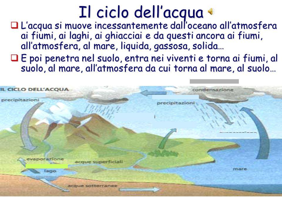 Il ciclo dell'acqua  L'acqua si muove incessantemente dall'oceano all'atmosfera ai fiumi, ai laghi, ai ghiacciai e da questi ancora ai fiumi, all'atmosfera, al mare, liquida, gassosa, solida…  E poi penetra nel suolo, entra nei viventi e torna ai fiumi, al suolo, al mare, all'atmosfera da cui torna al mare, al suolo…