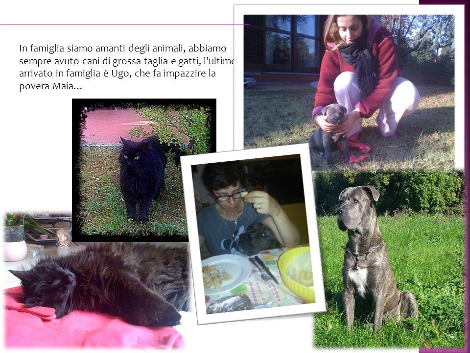 In famiglia siamo amanti degli animali, abbiamo sempre avuto cani di grossa taglia e gatti, l'ultimo arrivato in famiglia è Ugo, che fa impazzire la povera Maia…