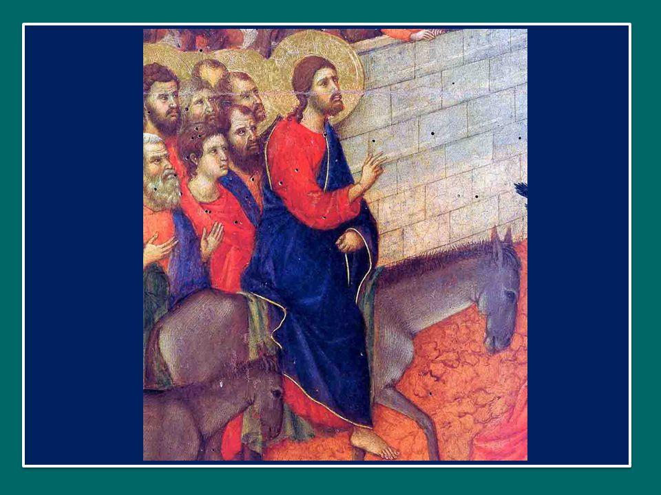 Hosánna fílio David: benedíctus qui venit in nómine Dómini. Osanna, o figlio di Davide: Benedetto Colui che viene nel nome del Signore. Rex Israël: Ho