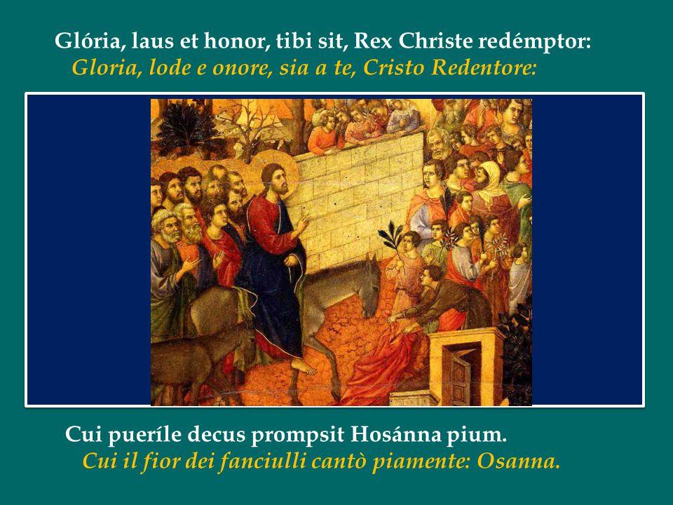 Papa Francesco Omelia della Messa nella Domenica della Passione o delle Palme Basilica di S. Pietro in Vaticano 13 aprile 2014 Papa Francesco Omelia d