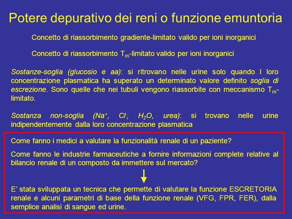 Potere depurativo dei reni o funzione emuntoria Sostanze-soglia (glucosio e aa): si ritrovano nelle urine solo quando l loro concentrazione plasmatica