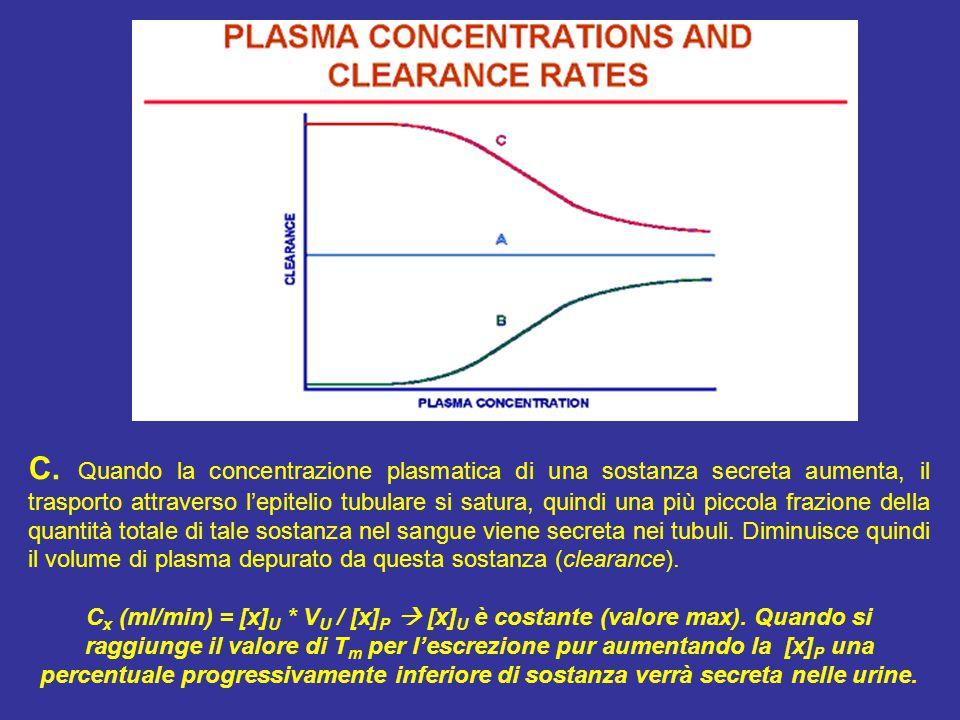 C. Quando la concentrazione plasmatica di una sostanza secreta aumenta, il trasporto attraverso l'epitelio tubulare si satura, quindi una più piccola