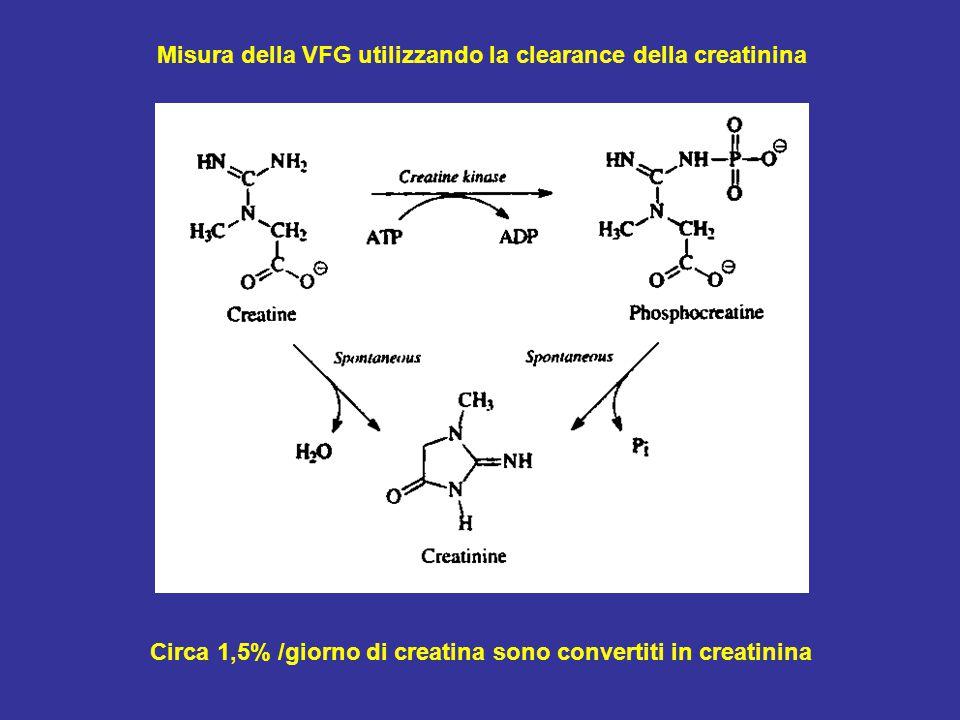 Misura della VFG utilizzando la clearance della creatinina Circa 1,5% /giorno di creatina sono convertiti in creatinina