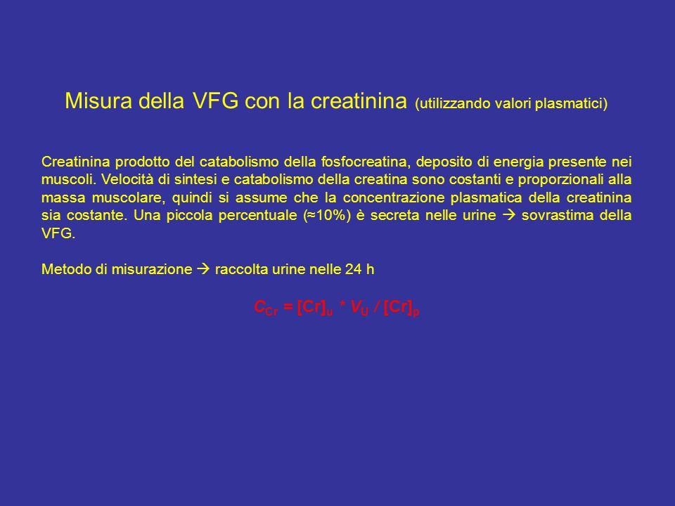 Misura della VFG con la creatinina (utilizzando valori plasmatici) Creatinina prodotto del catabolismo della fosfocreatina, deposito di energia presen