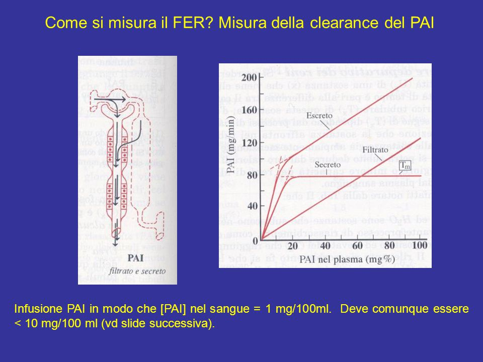Come si misura il FER? Misura della clearance del PAI Infusione PAI in modo che [PAI] nel sangue = 1 mg/100ml. Deve comunque essere < 10 mg/100 ml (vd