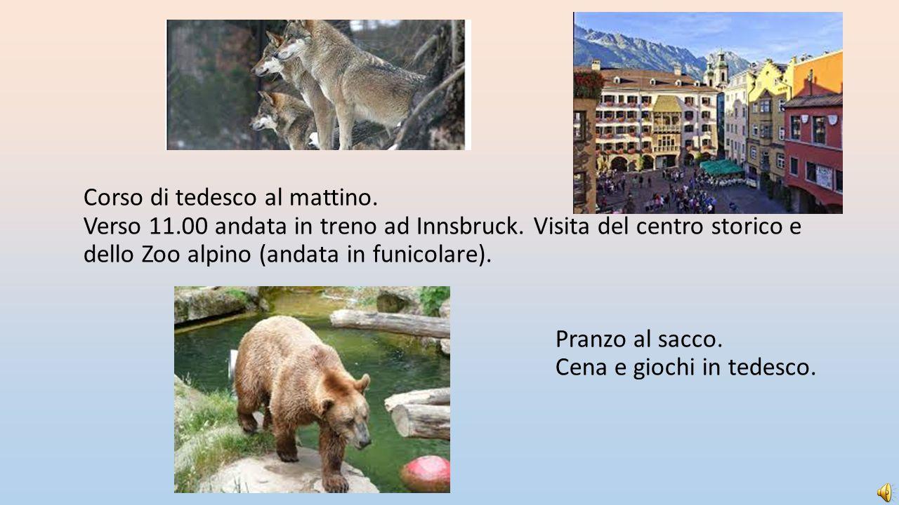 Corso di tedesco al mattino. Verso 11.00 andata in treno ad Innsbruck. Visita del centro storico e dello Zoo alpino (andata in funicolare). Pranzo al