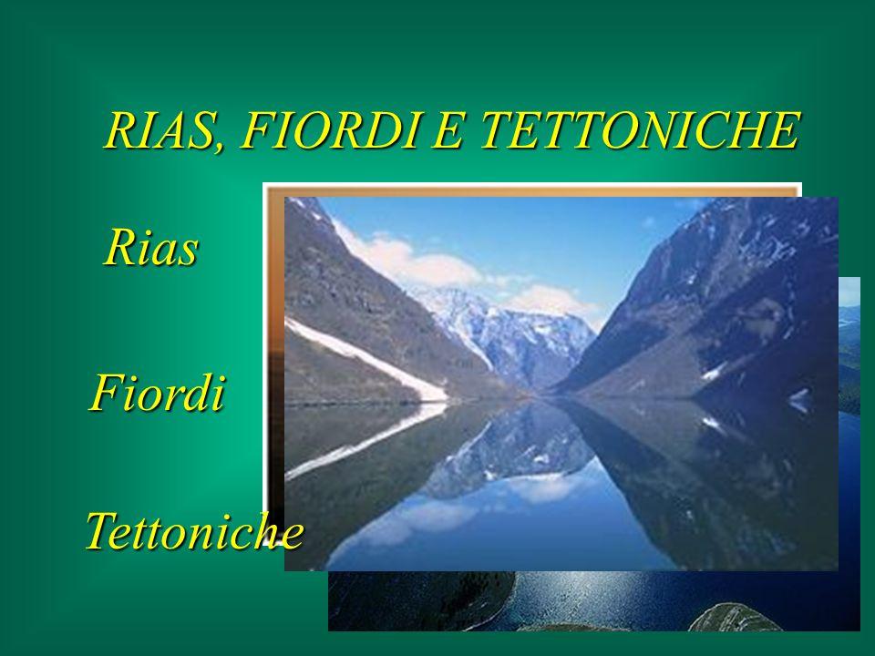 COSTE ROCCIOSE (margine attivo) erosione: azione del vento (modella) azione del mare (corrasione, compressione, asporto sedimenti) Falesia viva Falesia stabile Falesia morta retrocedono
