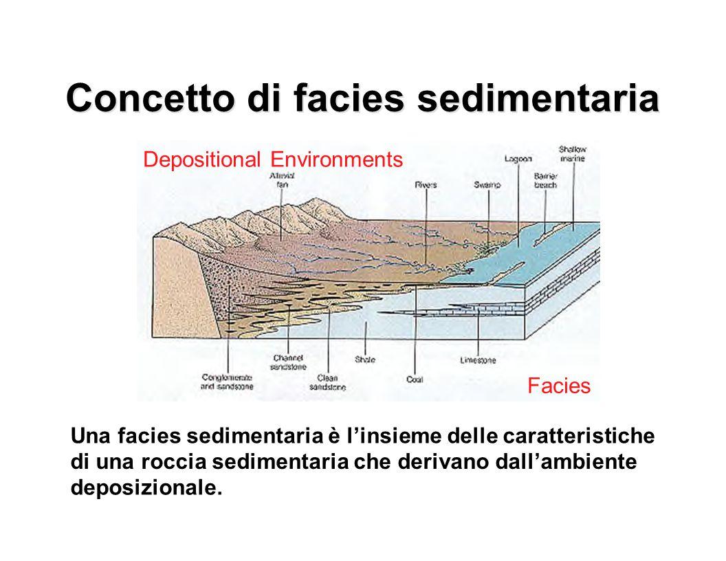 Concetto di facies sedimentaria Una facies sedimentaria è l'insieme delle caratteristiche di una roccia sedimentaria che derivano dall'ambiente deposi