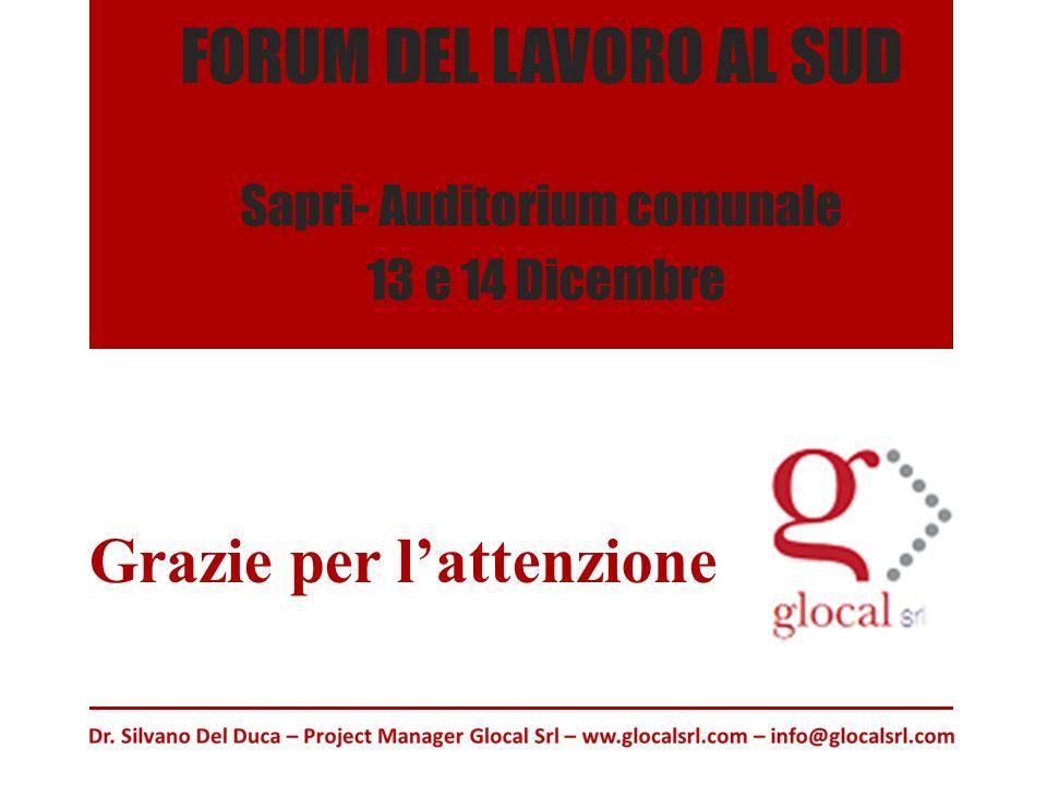 FORUM DEL LAVORO AL SUD Sapri- Auditorium comunale 13 e 14 Dicembre Grazie per l'attenzione