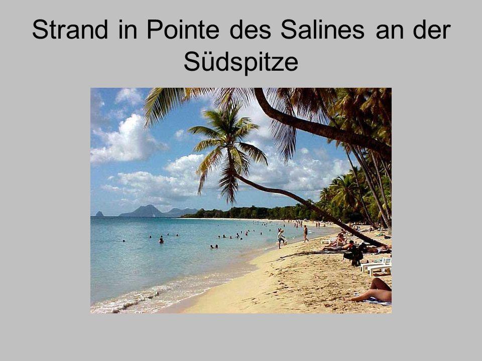 Strand in Pointe des Salines an der Südspitze