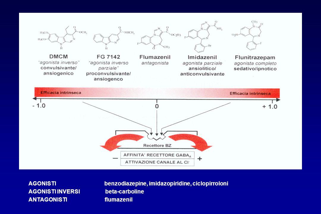 AGONISTI benzodiazepine, imidazopiridine, ciclopirroloni AGONISTI INVERSI beta-carboline ANTAGONISTI flumazenil