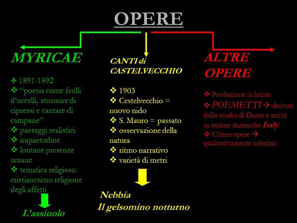 VITA Le DATE: S. Mauro (Forlì) 1855 – Bologna 1912 Gli EVENTI: 1867: la MORTE DEL PADRE  spaccatura biografica Lutti familiari Studi universitari a B