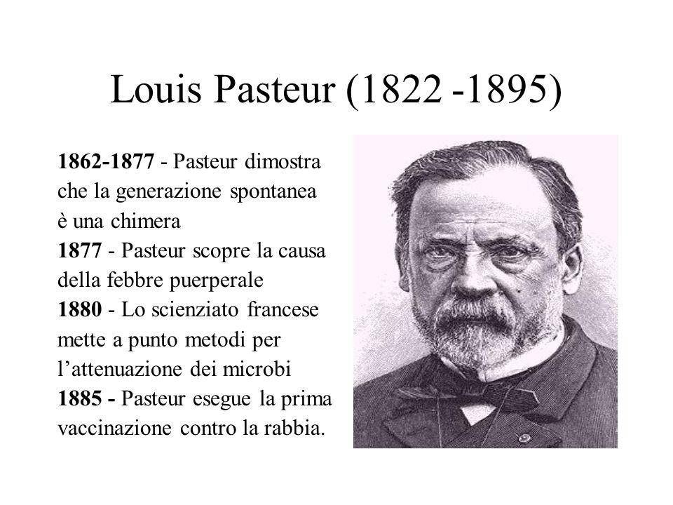 Louis Pasteur (1822 -1895) 1862-1877 - Pasteur dimostra che la generazione spontanea è una chimera 1877 - Pasteur scopre la causa della febbre puerper