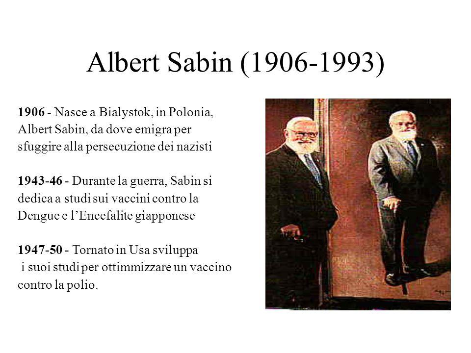 Albert Sabin (1906-1993) 1906 - Nasce a Bialystok, in Polonia, Albert Sabin, da dove emigra per sfuggire alla persecuzione dei nazisti 1943-46 - Duran
