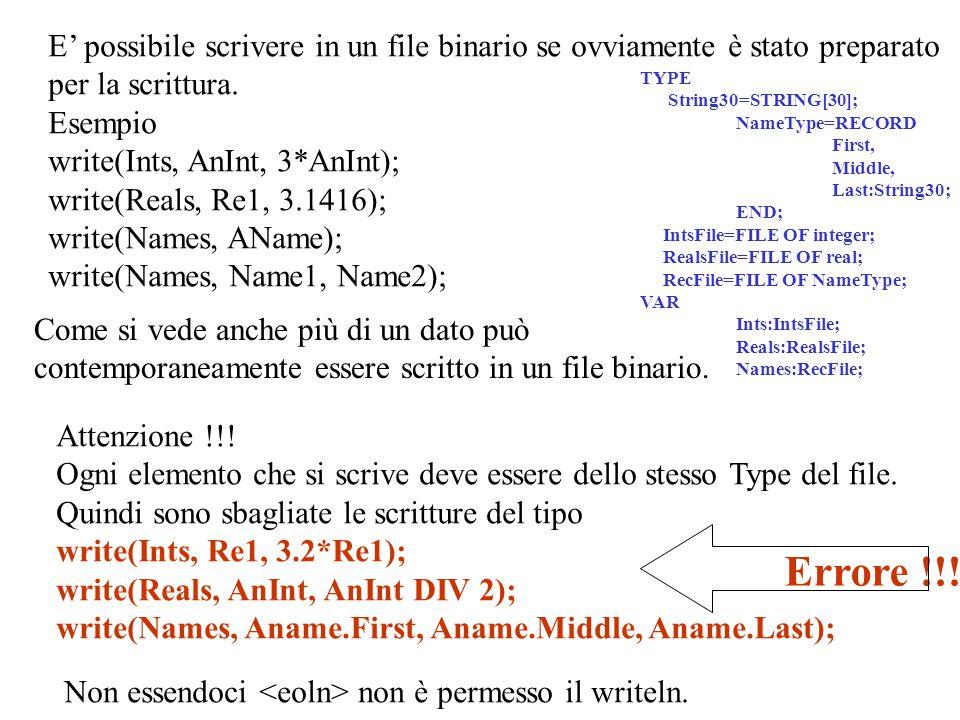E' possibile scrivere in un file binario se ovviamente è stato preparato per la scrittura.