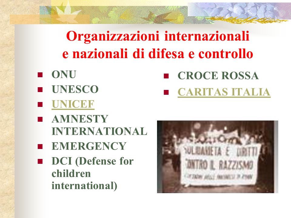 Organizzazioni internazionali e nazionali di difesa e controllo ONU UNESCO UNICEF AMNESTY INTERNATIONAL EMERGENCY DCI (Defense for children internatio