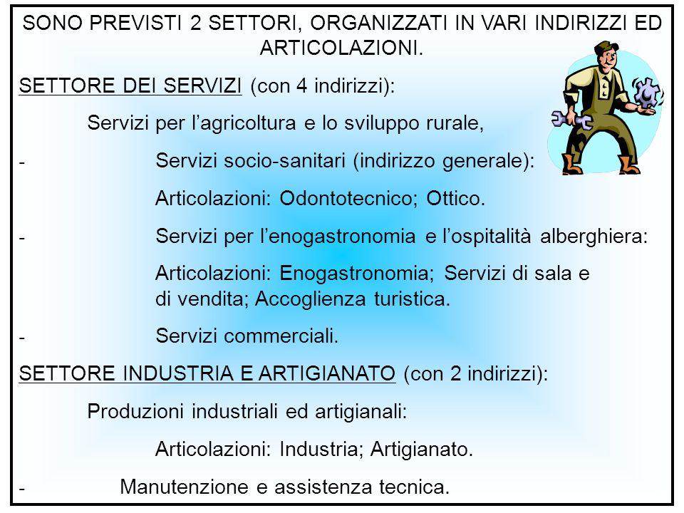 SONO PREVISTI 2 SETTORI, ORGANIZZATI IN VARI INDIRIZZI ED ARTICOLAZIONI. SETTORE DEI SERVIZI (con 4 indirizzi): Servizi per l'agricoltura e lo svilupp