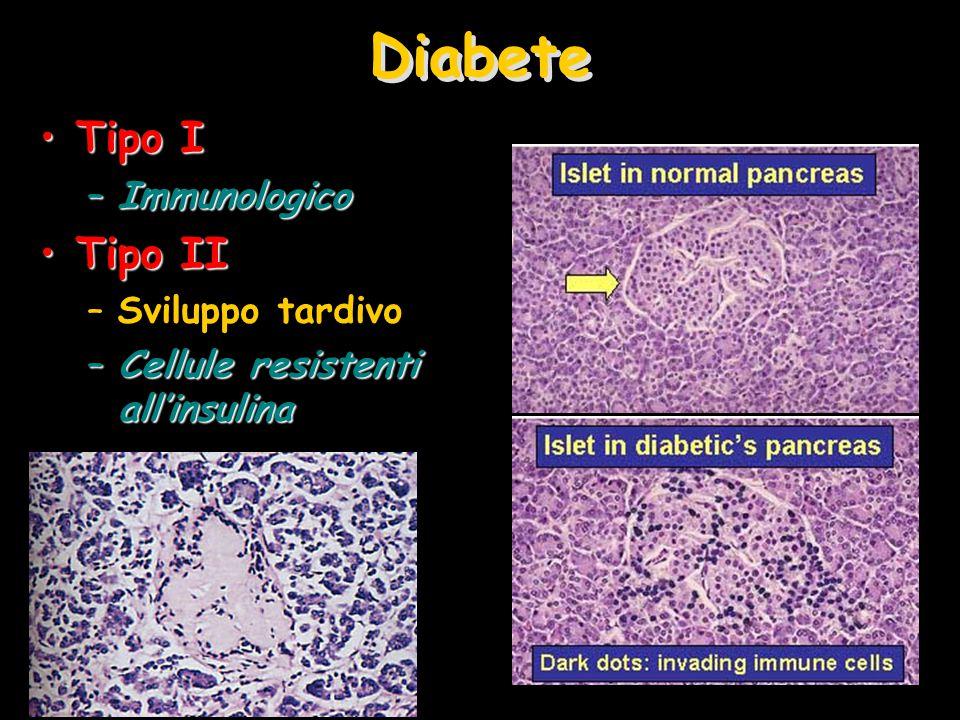 Diabete Tipo ITipo I –Immunologico Tipo IITipo II –Sviluppo tardivo –Cellule resistenti all'insulina