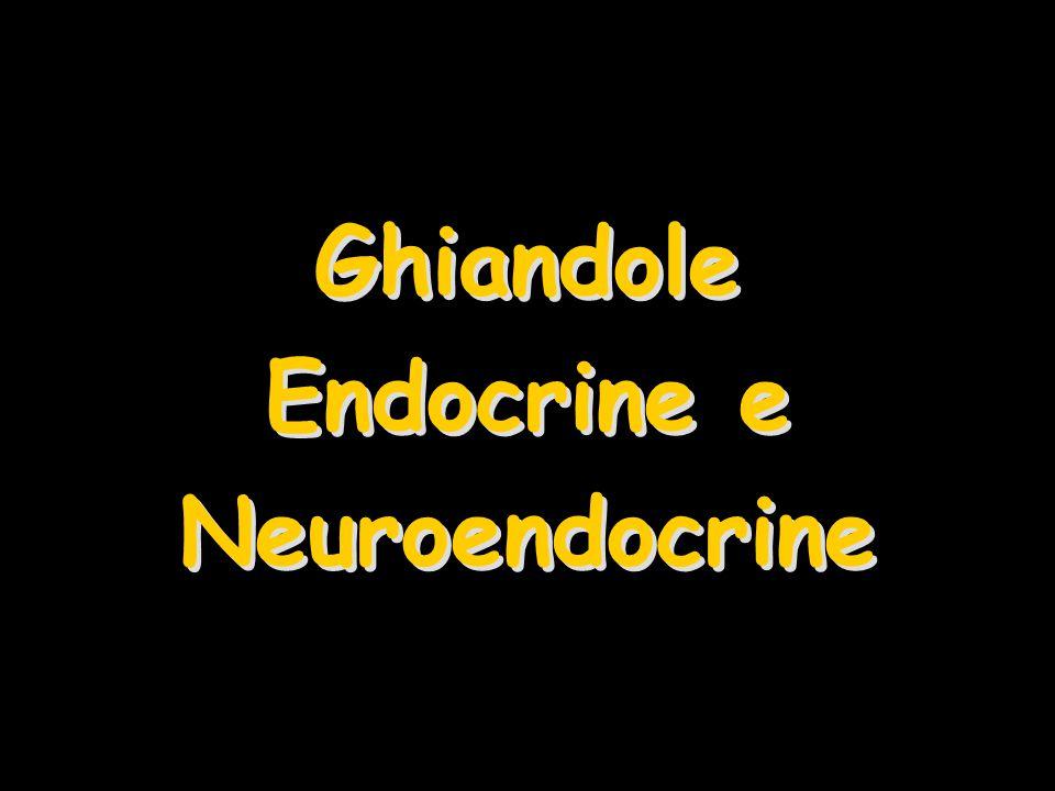 Ghiandole Endocrine e Neuroendocrine