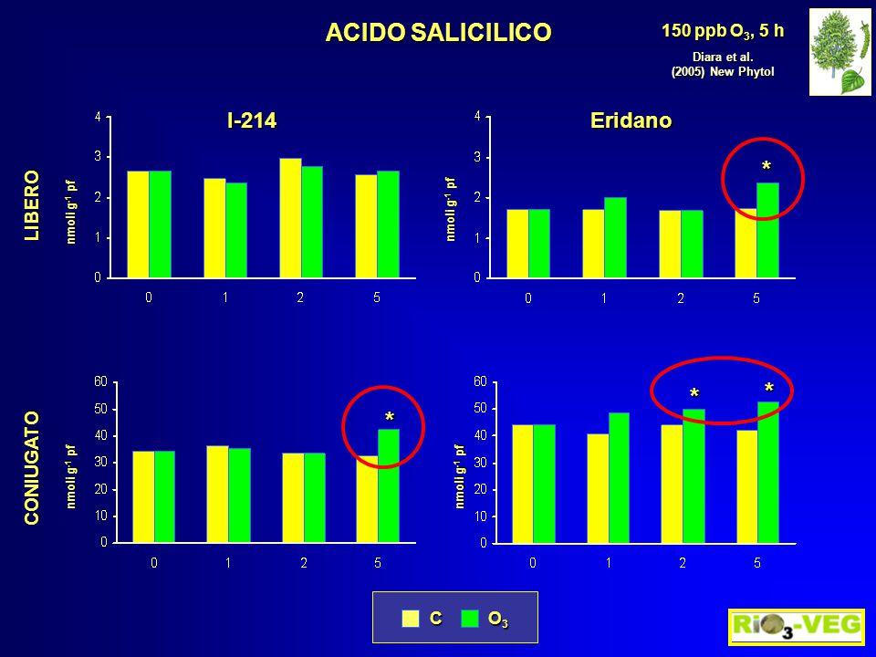 * * * CONIUGATO nmoli g -1 pf ACIDO SALICILICO Diara et al. (2005) New Phytol 150 ppb O 3, 5 h C O3O3O3O3 EridanoI-214 nmoli g -1 pf LIBERO *