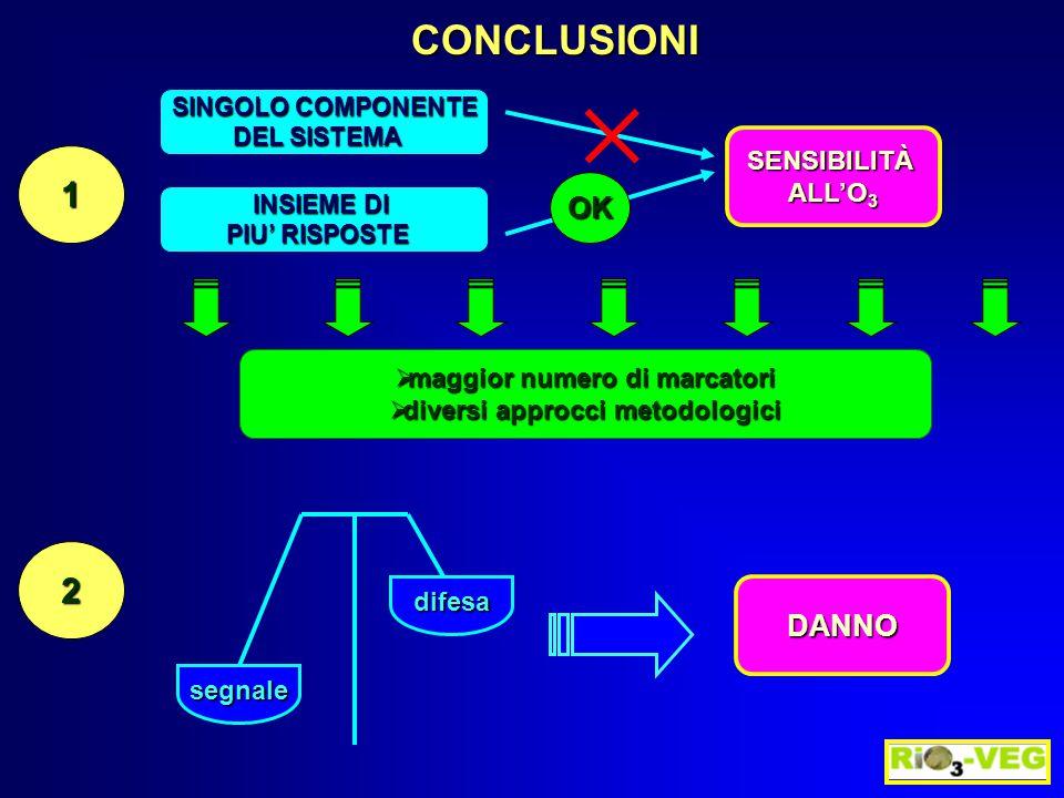 CONCLUSIONI 1 SINGOLO COMPONENTE DEL SISTEMA SENSIBILITÀ ALL'O 3  maggior numero di marcatori  diversi approcci metodologici INSIEME DI PIU' RISPOST