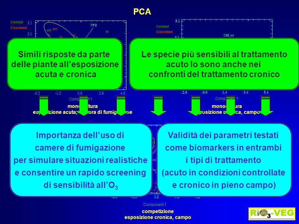 PCA Control Ozonated -3.2-1.20.82.84.8 -2.9 -1.9 -0.9 0.1 1.1 2.1 3.1  -carot Fv/Fm PSII NPQ ETR CHL tot Carot tot tot VAZ POD DEPS Vm TpBe Ko PlW Ac Ant Cy Bh PlBe RuNc Pm RuNc Av Ep PoB PoNc Ve Ca Vc Ve TpNc TrNc Le HyTrBe Anx Bre Sc Pa TrBe Le Hy HoBe HoW Av PoNcVc Ep Pm RuB PlBe RuB Brh Bri Ac PlW Ko TpBe Vm Component 1 Component 2 -2.8-0.81.23.25.2 -2.4 -1.4 -0.4 0.6 1.6 2.6 Fv/Fm CHL tot Carot tot Chla/Chlb VAZ DEPS POD T.pra Mi C T.pra Mi O 3 T.pra Mo O 3 T.pra Mo C PoaA Mo C Ver Mi O 3 PoaA Mo O 3 PoaV Mi C PoaA Mi C PoaA Mi O 3 PoaV Mi O 3 Ach Mi O 3 Ver Mo O 3 Ver Mi C Ver Mo C Bro Mi C Ach Mo C Bri Mo C Bri Mo O 3 Bri Mi C Bri Mi O 3 Ach Mo O 3 Bro Mi O 3 Bro Mo C Ach Mi C Plan Mo O 3 Bro Mo O 3 Plan Mi C Plan Mo C Plan Mi O 3 Control Ozonated Component 1 Component 2 monocultura esposizione acuta, camera di fumigazione monocultura esposizione cronica, campo competizione Simili risposte da parte delle piante all'esposizione acuta e cronica Le specie più sensibili al trattamento acuto lo sono anche nei confronti del trattamento cronico Importanza dell'uso di camere di fumigazione per simulare situazioni realistiche e consentire un rapido screening di sensibilità all'O 3 Validità dei parametri testati come biomarkers in entrambi i tipi di trattamento (acuto in condizioni controllate e cronico in pieno campo)