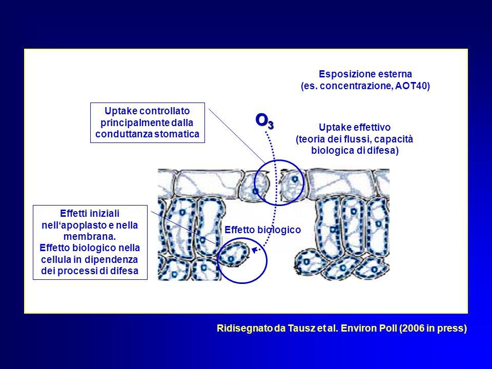 O3O3O3O3 Esposizione esterna (es. concentrazione, AOT40) Uptake effettivo (teoria dei flussi, capacità biologica di difesa) Uptake controllato princip