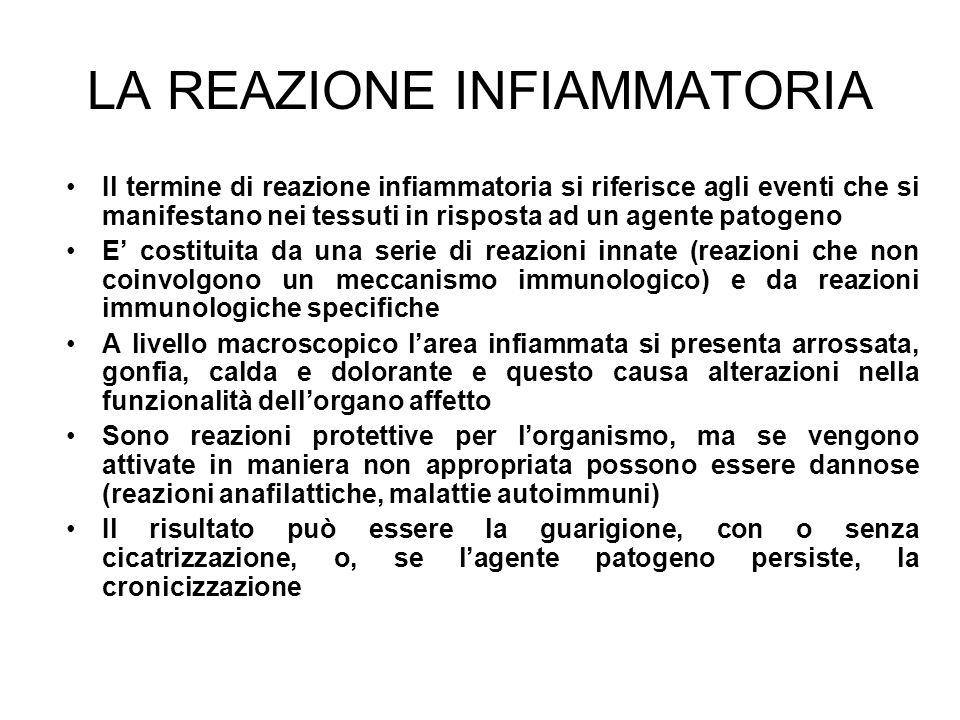 LA REAZIONE INFIAMMATORIA Il termine di reazione infiammatoria si riferisce agli eventi che si manifestano nei tessuti in risposta ad un agente patoge