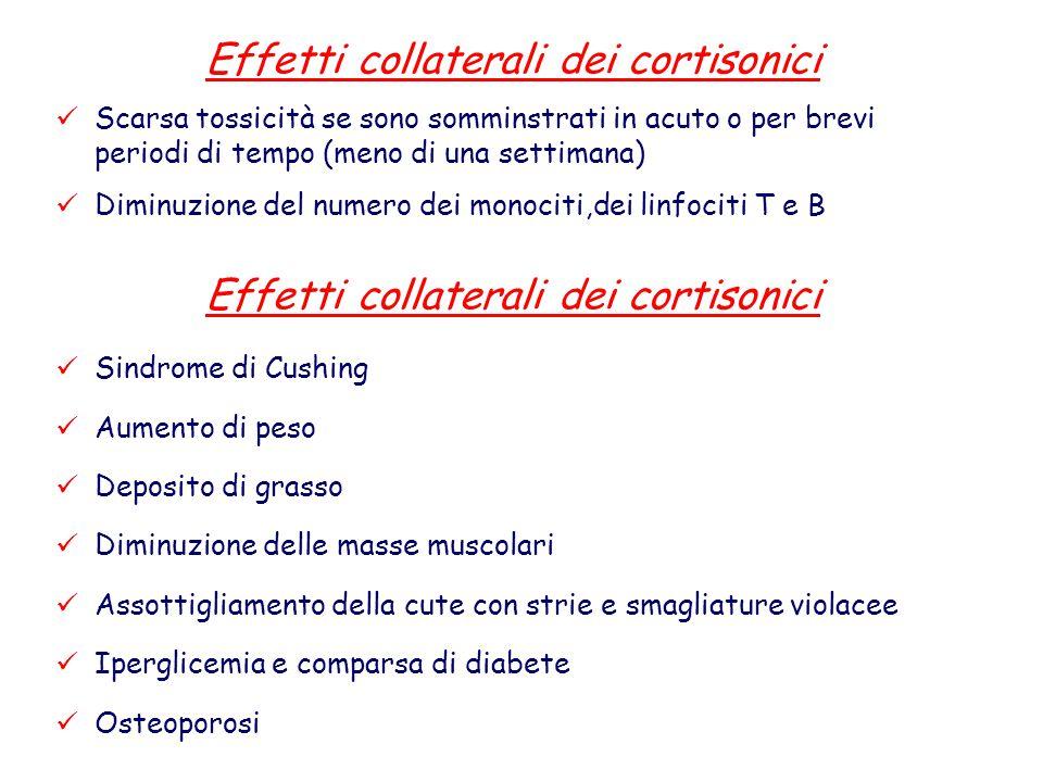 Effetti collaterali dei cortisonici Scarsa tossicità se sono somminstrati in acuto o per brevi periodi di tempo (meno di una settimana) Diminuzione de
