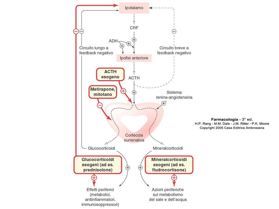 Frequenza degli effetti indesiderati in relazione alla durata del trattamento Effetti sub-acuti (settimane) Frequenti: aumenti di peso, alterazioni dell'umore, intolleranza al glucosio, soppressione surrenalica transitoria Sporadici: reazioni anafilattiche, ipertrigliceridemia, ulcera peptica, pancreatite acuta