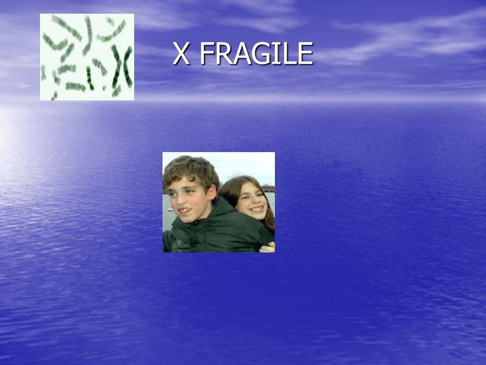 X FRAGILE