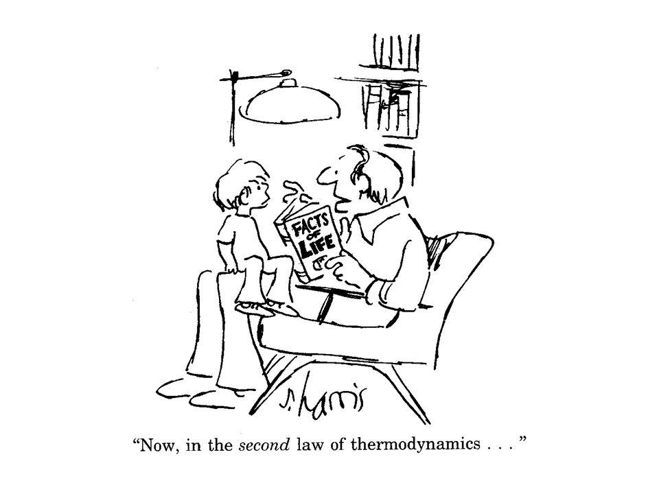 BIOENERGETICA branca della biochimica che si occupa di trasferimento e utilizzazione di E Si applicano le leggi della termodinamica I, II e III legge della termodinamica Negli organismi viventi l'ordine è conservato prelevando E dall'ambiente (nutrienti o luce solare) e restituendo E all'ambiente (calore ed entropia)
