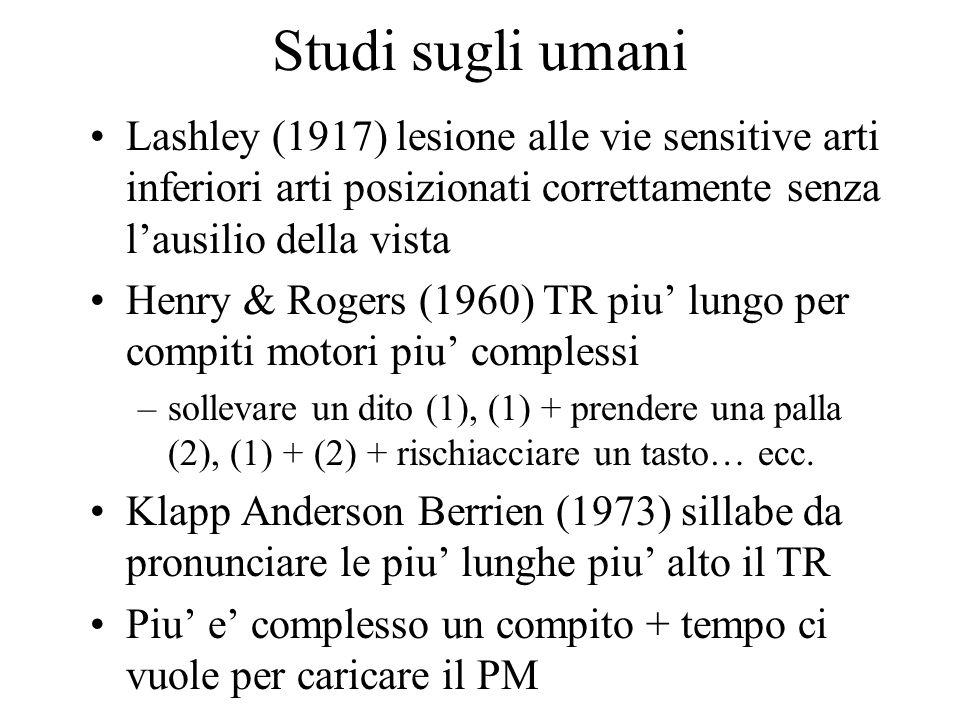 Studi sugli umani Lashley (1917) lesione alle vie sensitive arti inferiori arti posizionati correttamente senza l'ausilio della vista Henry & Rogers (1960) TR piu' lungo per compiti motori piu' complessi –sollevare un dito (1), (1) + prendere una palla (2), (1) + (2) + rischiacciare un tasto… ecc.