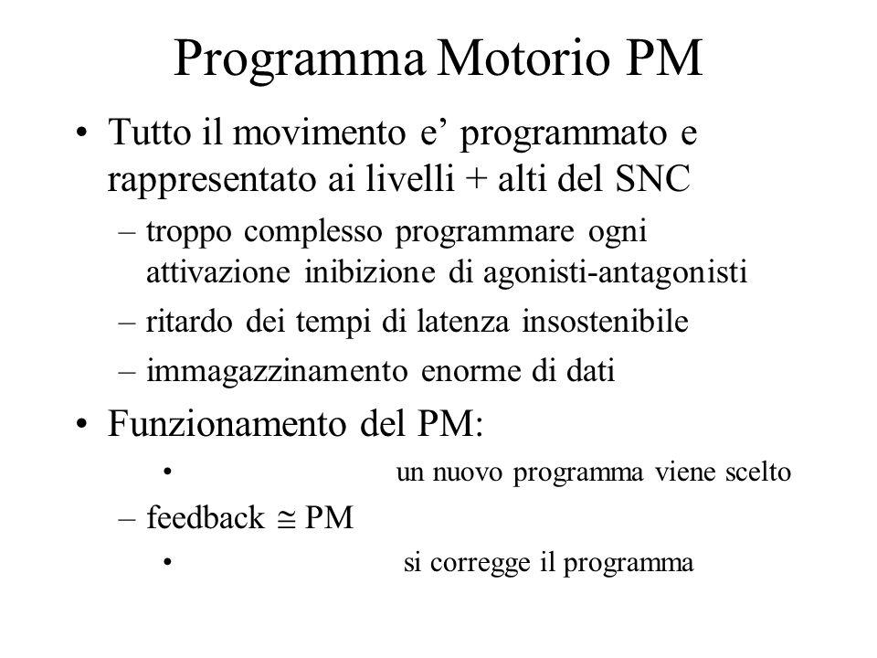 Programma Motorio PM Tutto il movimento e' programmato e rappresentato ai livelli + alti del SNC –troppo complesso programmare ogni attivazione inibizione di agonisti-antagonisti –ritardo dei tempi di latenza insostenibile –immagazzinamento enorme di dati Funzionamento del PM: un nuovo programma viene scelto –feedback  PM si corregge il programma