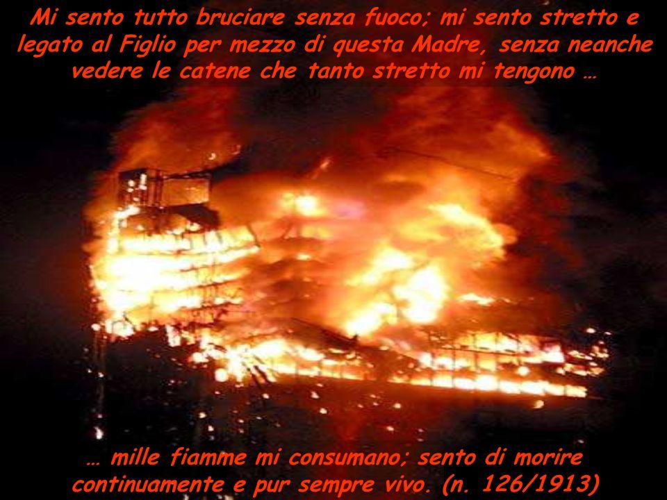 … mille fiamme mi consumano; sento di morire continuamente e pur sempre vivo. (n. 126/1913) Mi sento tutto bruciare senza fuoco; mi sento stretto e le