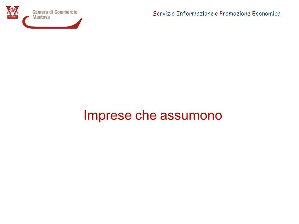 Servizio Informazione e Promozione Economica Imprese che prevedono assunzioni per il 2011 (quota % sul totale) Mantova Lombardia 2011 20102009 Industria in senso stretto CostruzioniCommercio Altri Servizi Totale Imprese che prevedono assunzioni25,016,620,727,023,619,021,020,5 Imprese 1-9 dipendenti13,714,713,620,216,412,814,89,9 Imprese 10-49 dipendenti34,428,529,249,736,026,727,723,7 Imprese 50 dipendenti e oltre75,8-77,586,379,774,876,870,8 Fonte: Elaborazione Servizio Informazione e Promozione Economica della CCIAA di Mantova su dati Unioncamere - Ministero del Lavoro, Sistema Informativo Excelsior, 2011