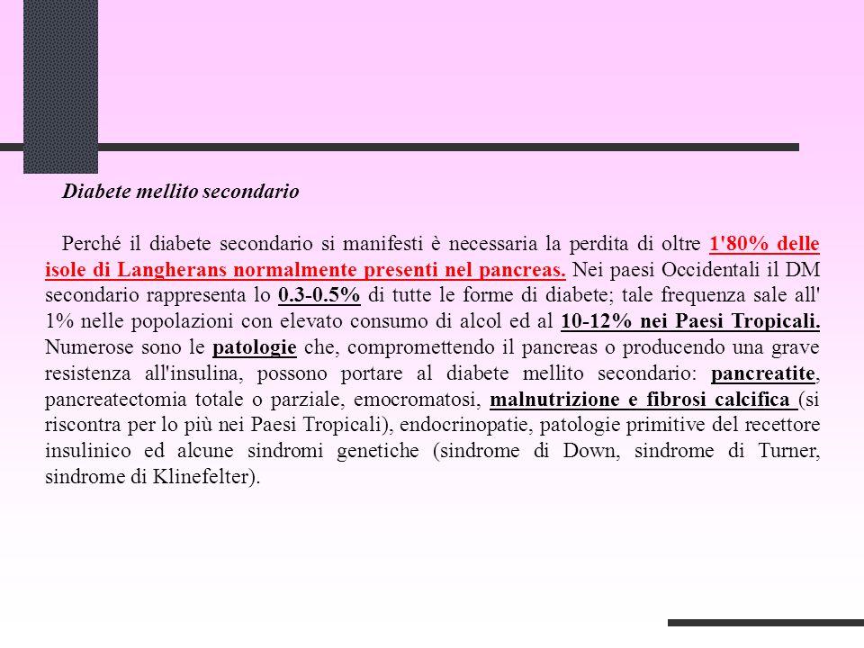 Diabete mellito secondario Perché il diabete secondario si manifesti è necessaria la perdita di oltre 1 80% delle isole di Langherans normalmente presenti nel pancreas.